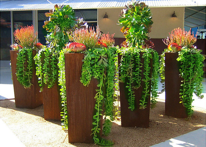Modern Style Large Corten Steel Planter Boxes For Outdoor Decoration 80cm Height